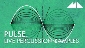 Pulse – Live Percussion Samples