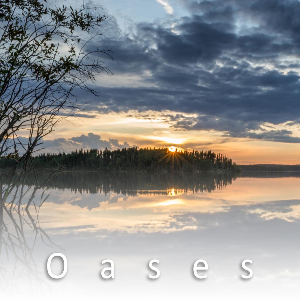 oases6